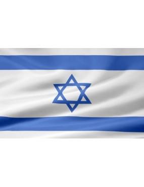 Vlajka Izrael, zástava